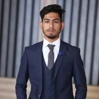Umar Hameed Animuswebs